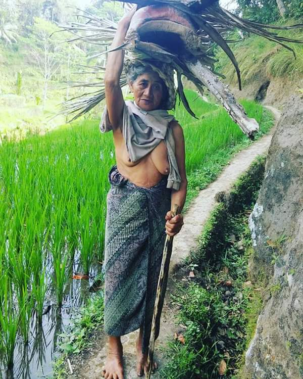 balinese lady working on rice fields