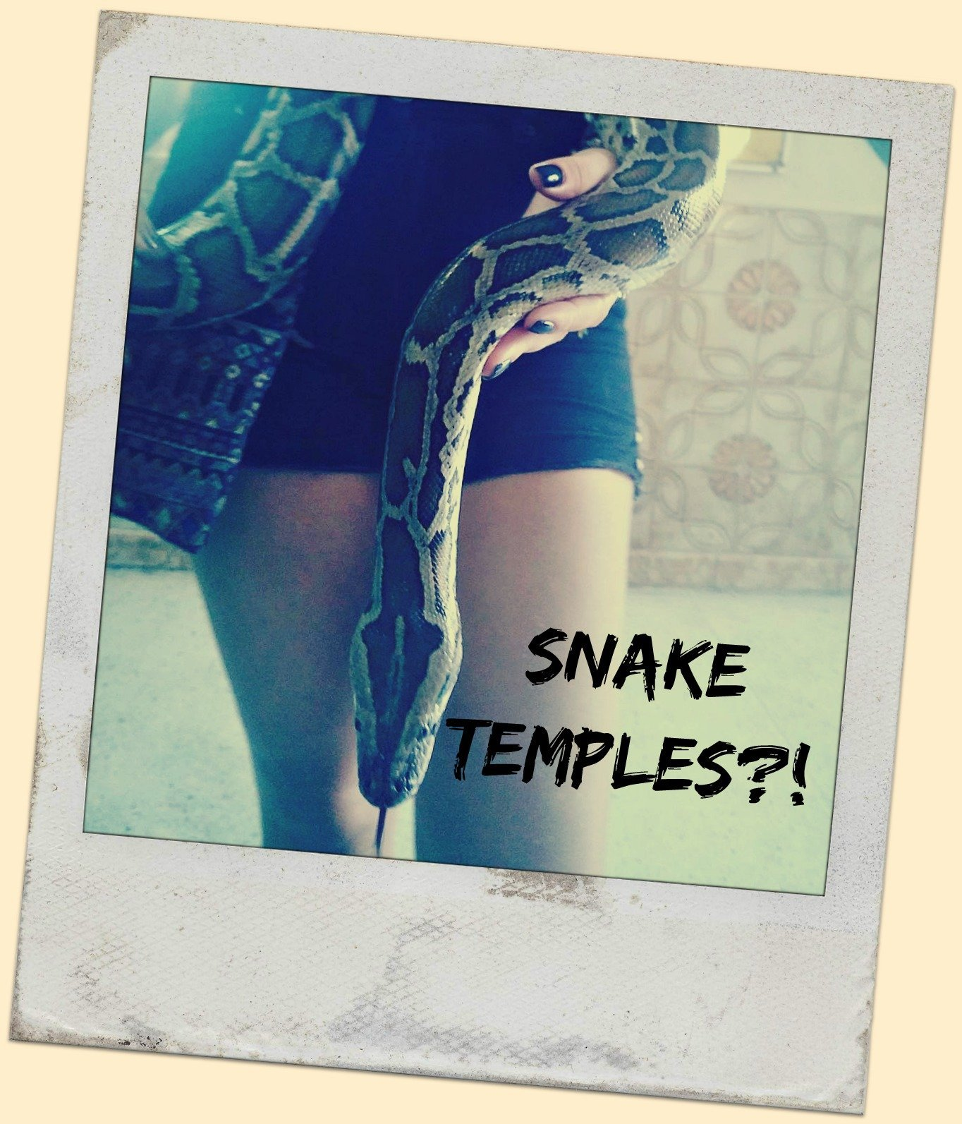 Visiting a Snake Temple in Penang!