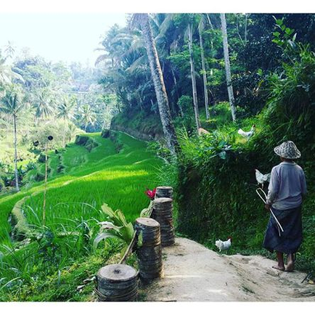 6 Reasons Why Bali is Perfect for Solo Travellers!