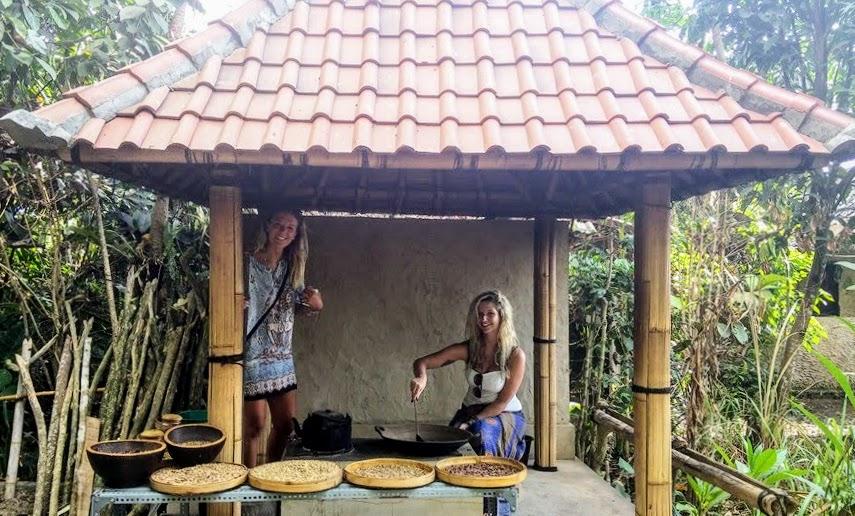 ubud coffee plantation, things to do in ubud