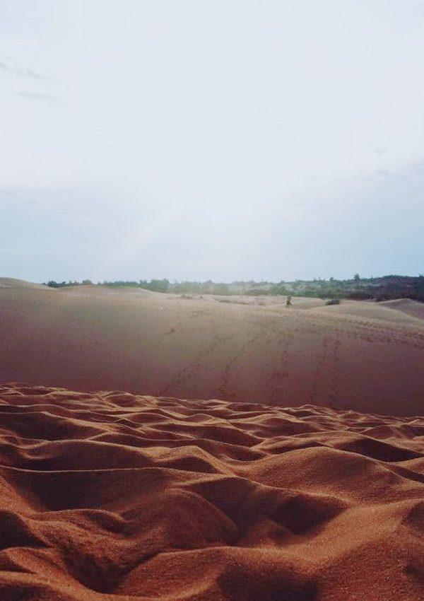 Seafood & Sand Dunes | Backpacking Mui Ne, Vietnam