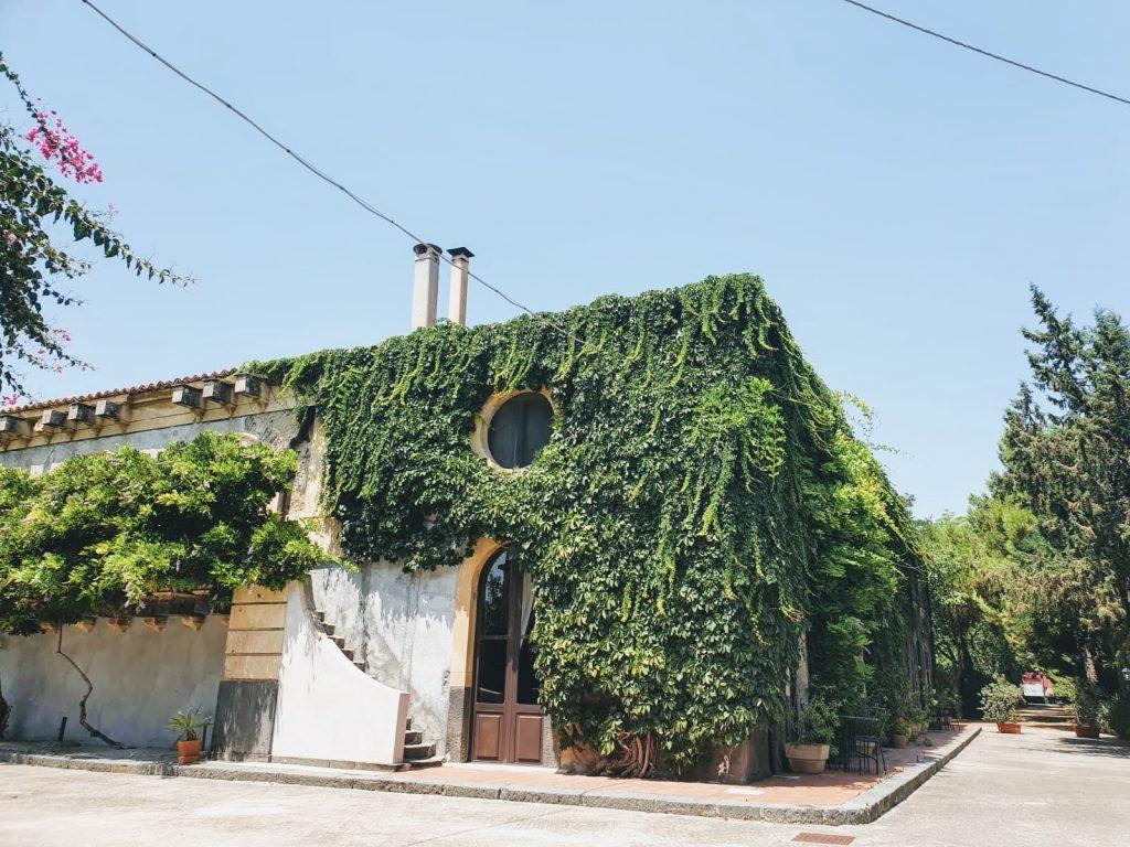 tenuta del gelso, Etna Wine